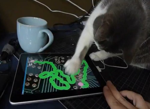 Blogging on mobile feels like this LolCat doodling